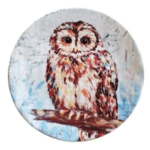 Pier 1 decorative owl plate 9 inches